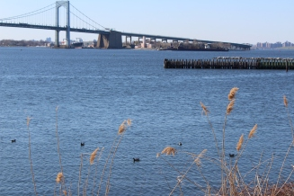 Throgs Neck Bridge